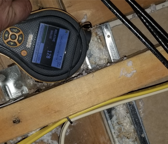 Moisture reading in attic.