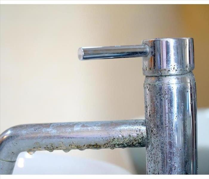 A faucet with mold