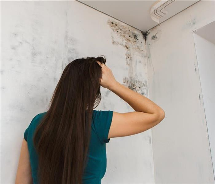 Girl found mold in the corner of her home